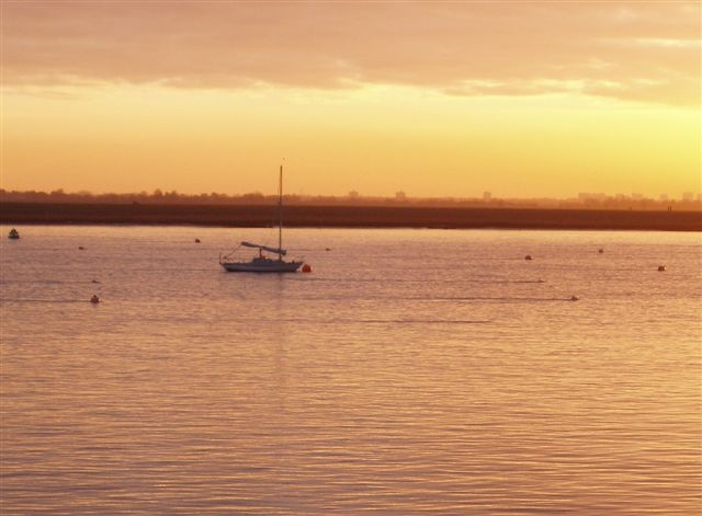 Mingming alone in a winter sunset on the River Crouch